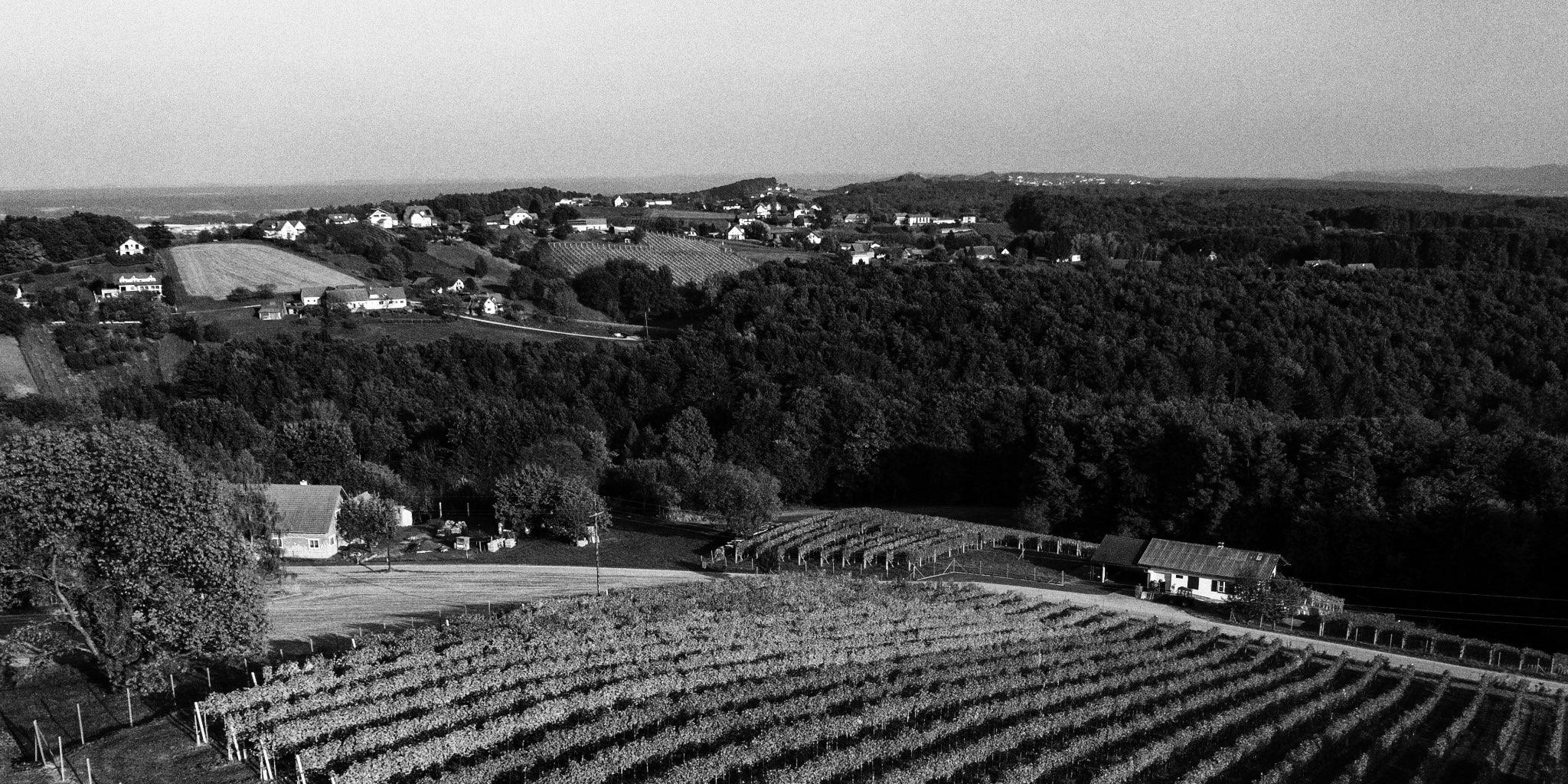 Weingarten Kainrath