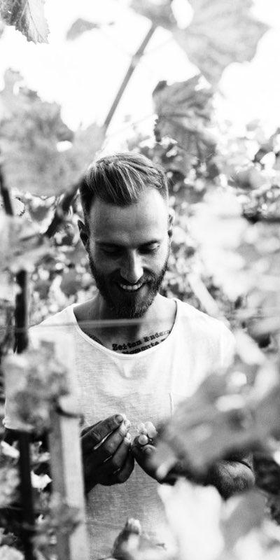 Markus Kainrath im Weingarten